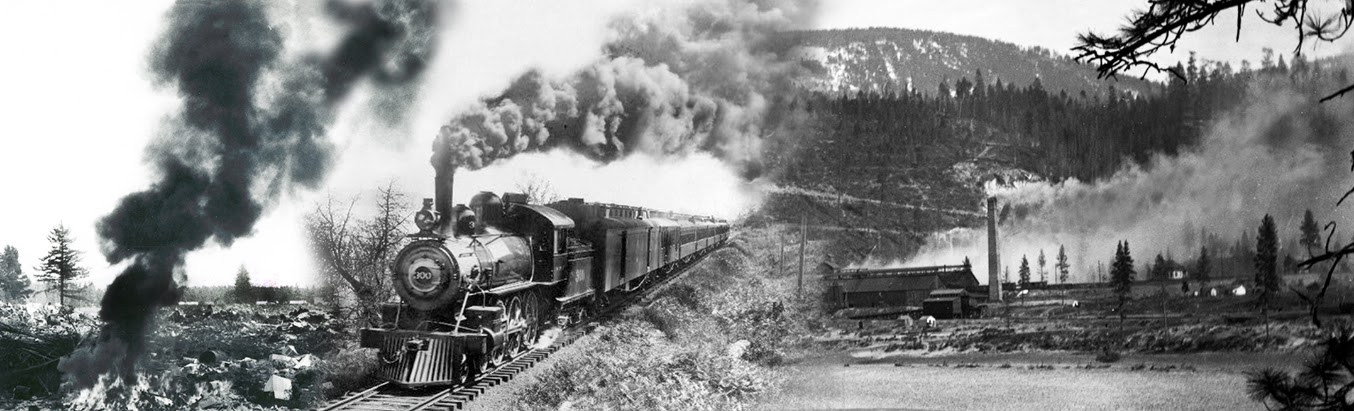 A collage of an old coal locomotive going by a brush burn and smokey chimney