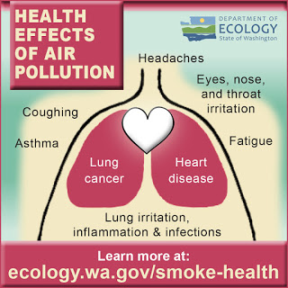 Lungs showing different health effect from smoke health