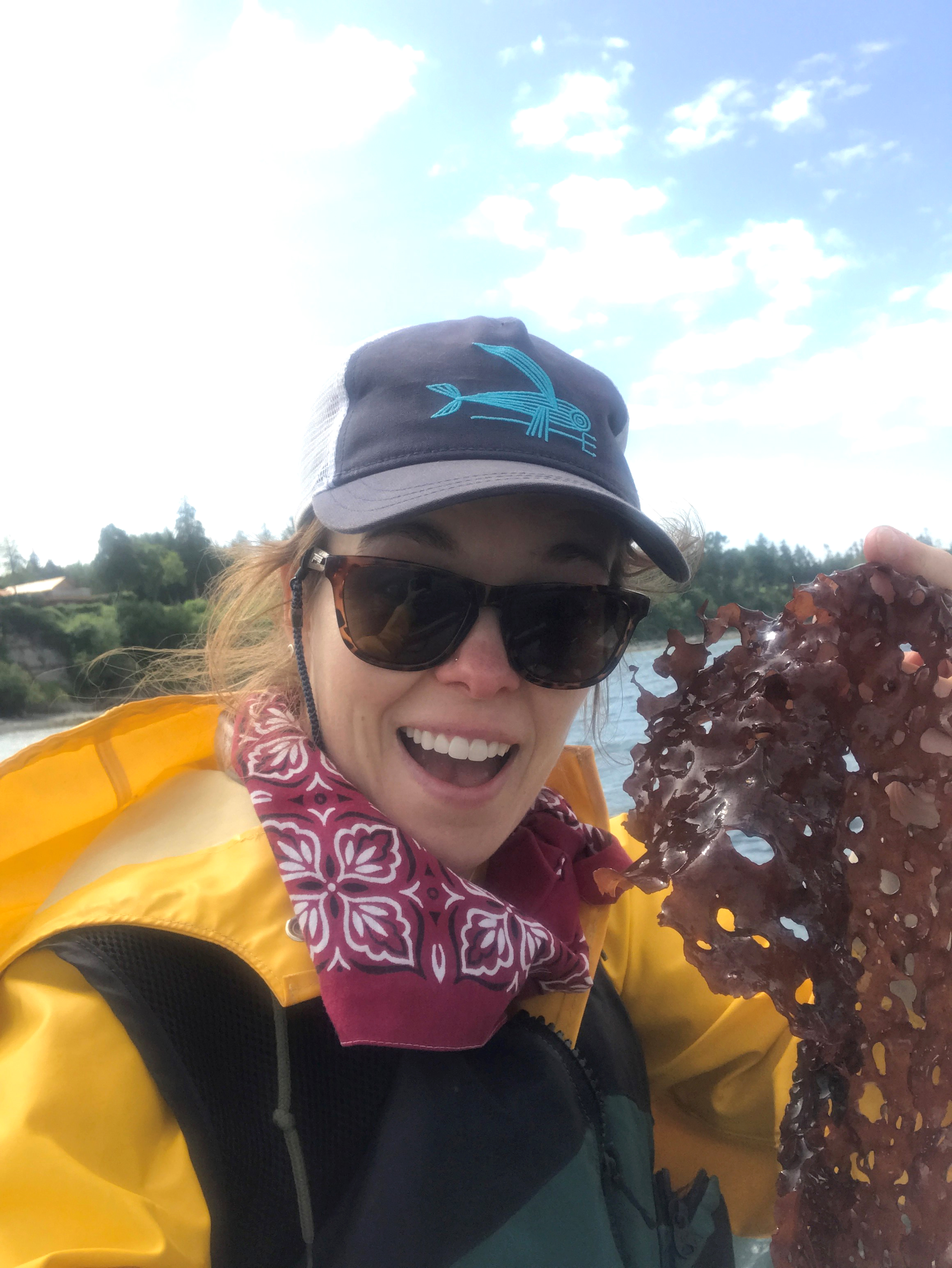 A smiling female scientist in yellow foul weather gear, red bandana and life jacket holds up a large piece of red seaweed on a sunny day.
