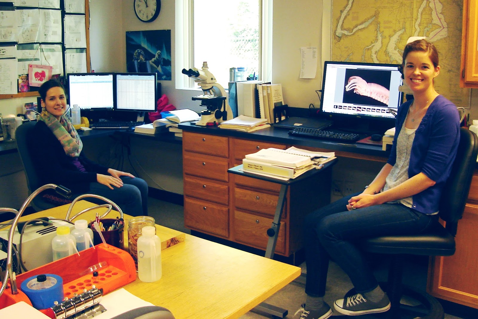 Two scientists sit beside desk in benthic lab with invertebrate image on computer screen.
