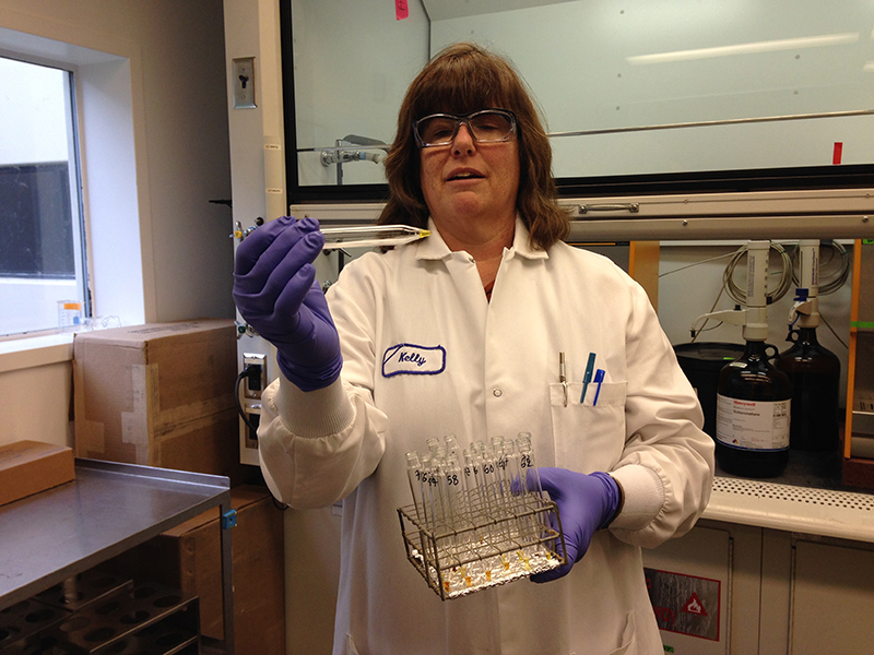 Woman in a white lab coat and purple latex gloves holding test tubes.