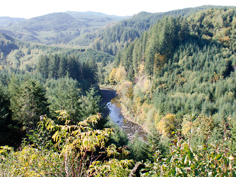 Aerial view of Chehalis River near Pe Ell in Lewis County, close to location for proposed flood retention dam.