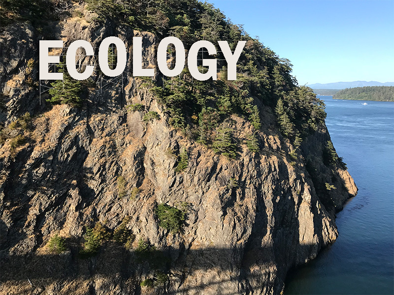 White letters superimposed over a picture of a cliff in the San Juan Islands, that say Ecology like the iconic Hollywood sign
