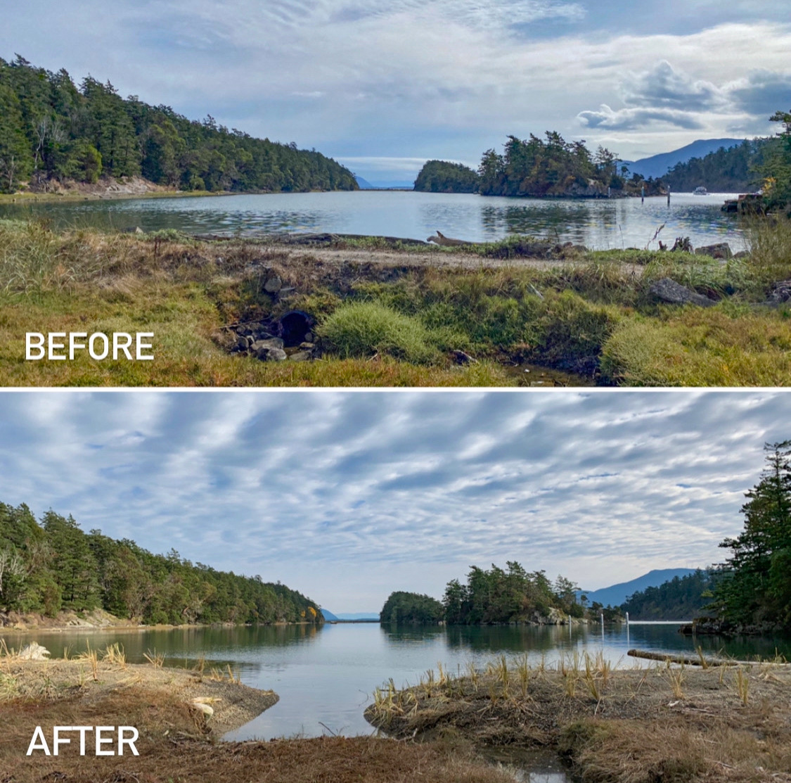 A causeway on Succia Island before and after restoration