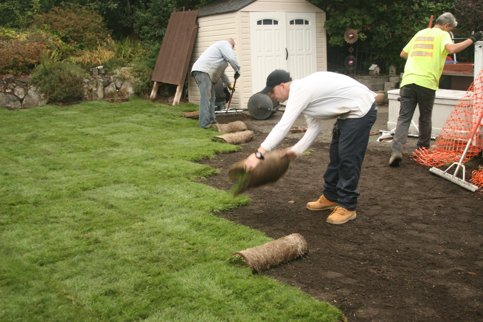 Worker laying sod.