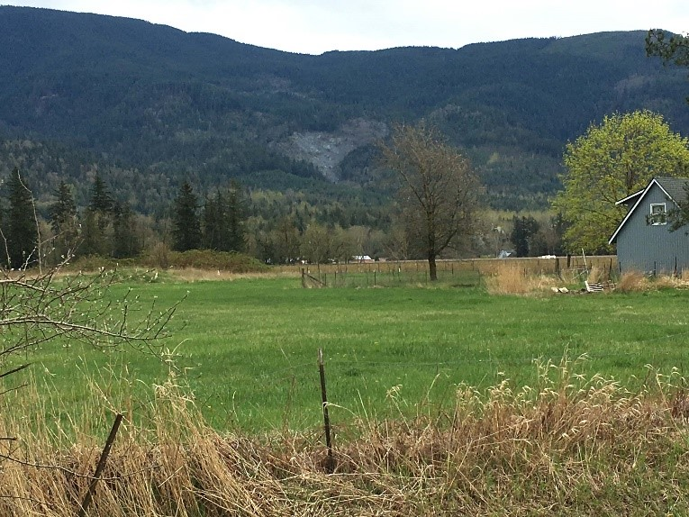 View of a pasture, house in foreground with Sumas Mountain in background, taking up backdrop, covered in trees