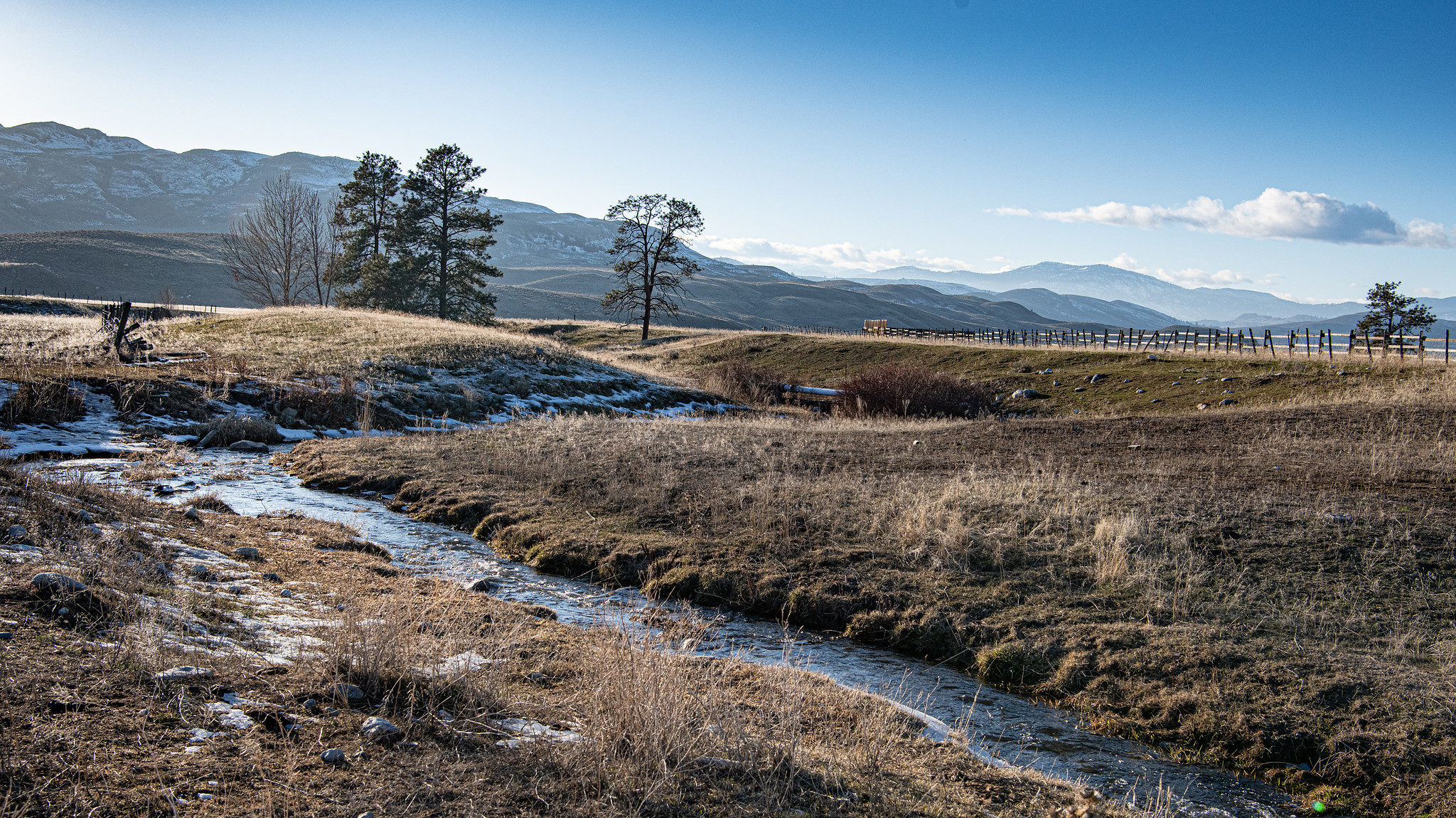 Wintery view of grasslands and Antoine Creek, a tributary of the Okanogan River, with mountains in the background.