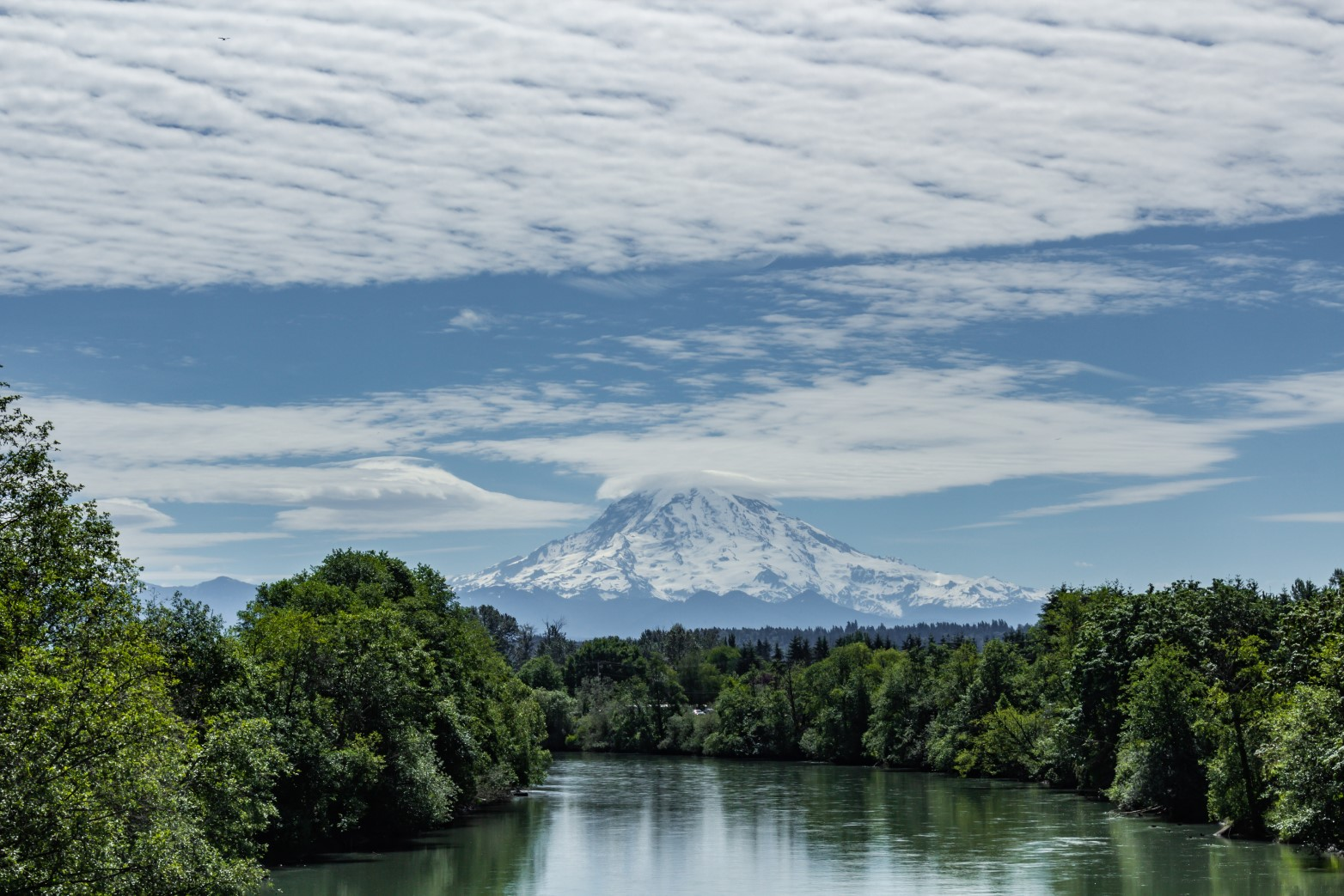 The Puyallup River with Mt. Rainier in the background. Photo by David Seibold