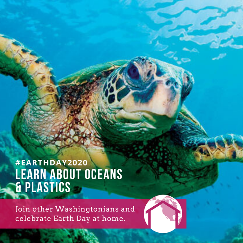 Sea turtle in ocean. Text over picture: #earthday2020 Learn about oceans and plastic. Join Washingtonians and celebrate earth Day at home.