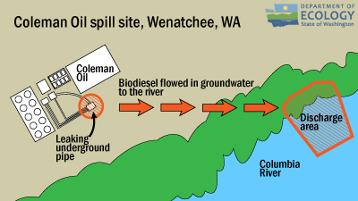 Drawing of the spill site and how the oil flowed in groundwater into the river.