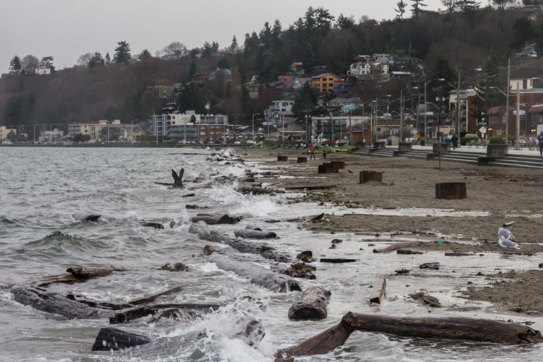 Shoreline in Washington showing high tides, debris on beach, and homes in the background.