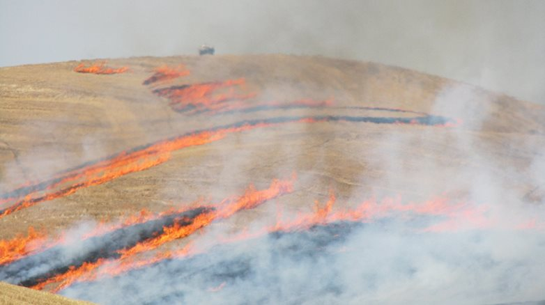 Burning wheat field in agricultural region of Washington, east of the cascades.