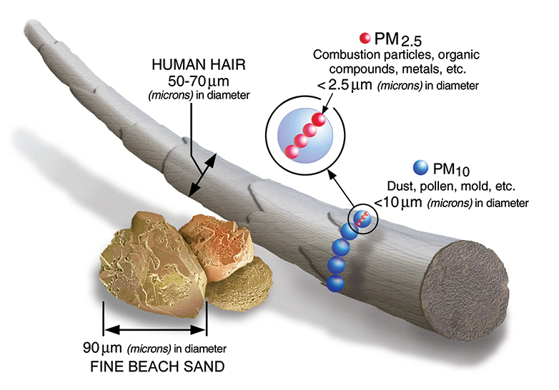 Particulate matter 10 shown being much smaller than a human hair and even one particle of fine beach sand.