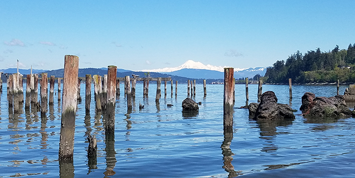 Shoreline in Anacortes, Washinton with old pilings in the foreground and mountains in the background.