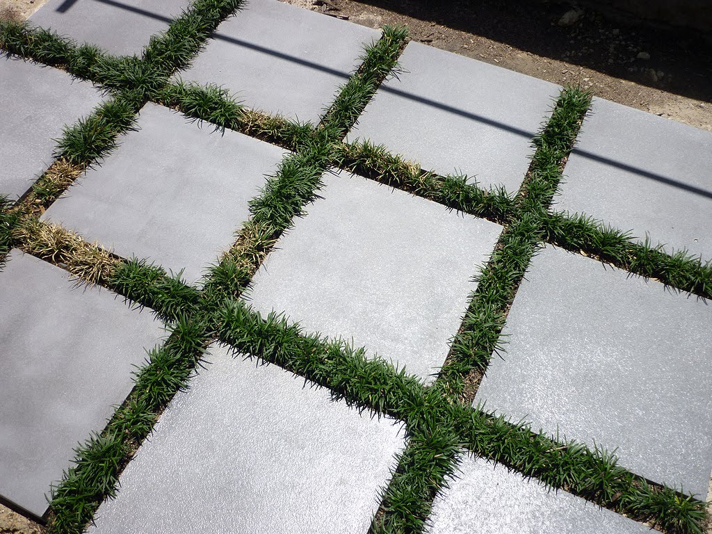 Image of cement pavers with grass growing inbetween
