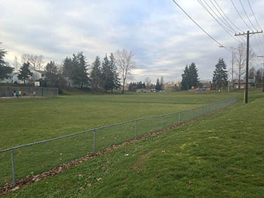 Photo showing the lawn of the park with a chain link fence at the edge