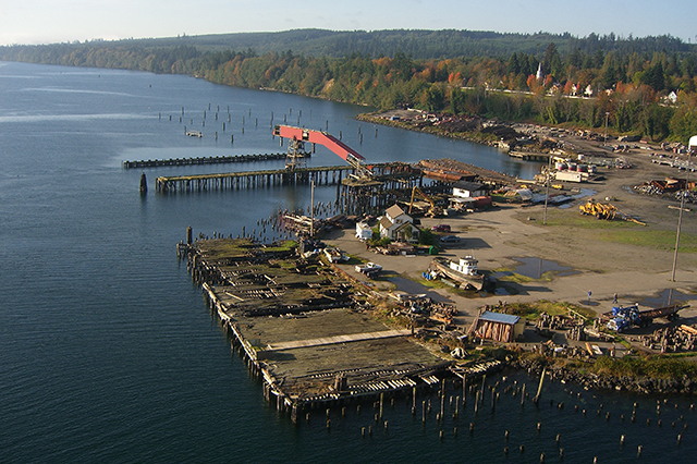 2012 Photo of the Port Gamble Mill Site before cleanup. Shows former timber mill property with deteriorating dock structures and thousands of old creosoted pilings.