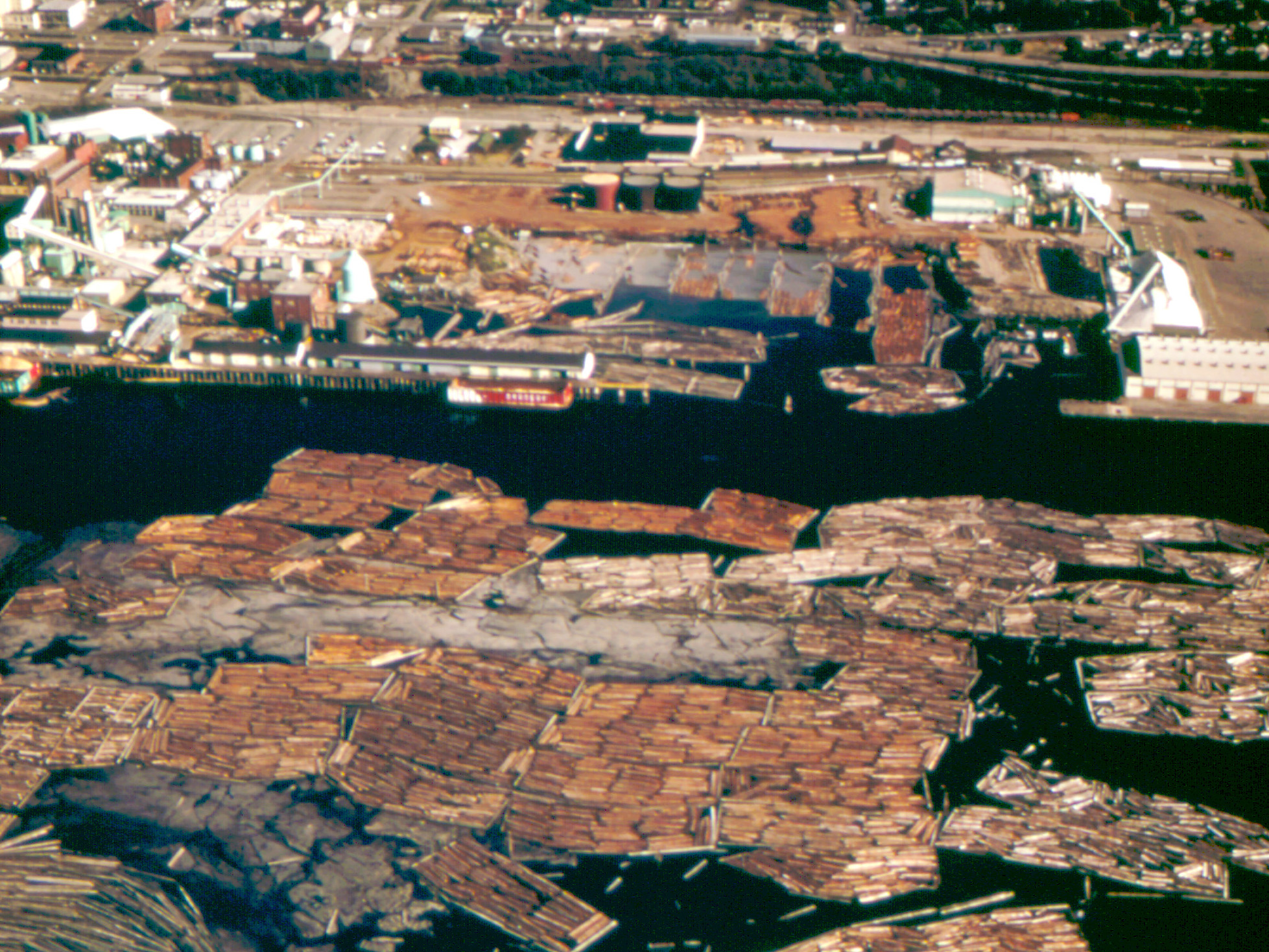 An aerial view of Bellingham Bay showing industry on the shore and thousands of logs floating in the bay.