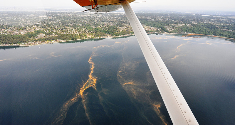 broad view of Puget Sound shoreline from above, water has streaks of orange