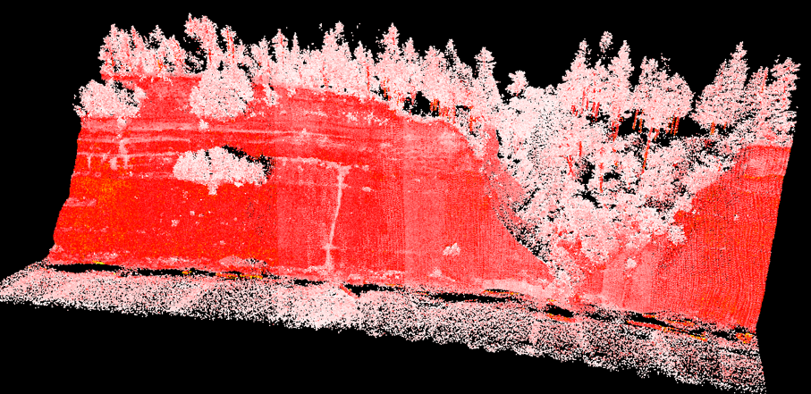 A computer simulated image from a Lidar point cloud of a steep, exposed bluff with trees on the top, and the beach below