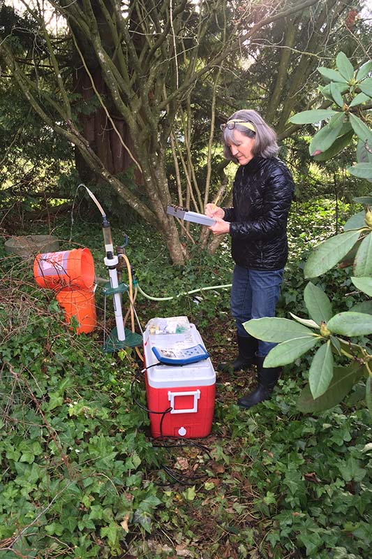 A scientist stands in an area with ivy and rhododendrons. Tubes come out a white pipe in the ground. She takes notes, a sample cooler at her feet.