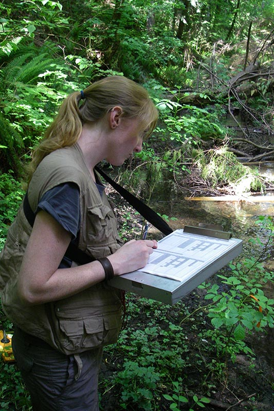 Scientist in vest with clipboard takes notes beside a stream.