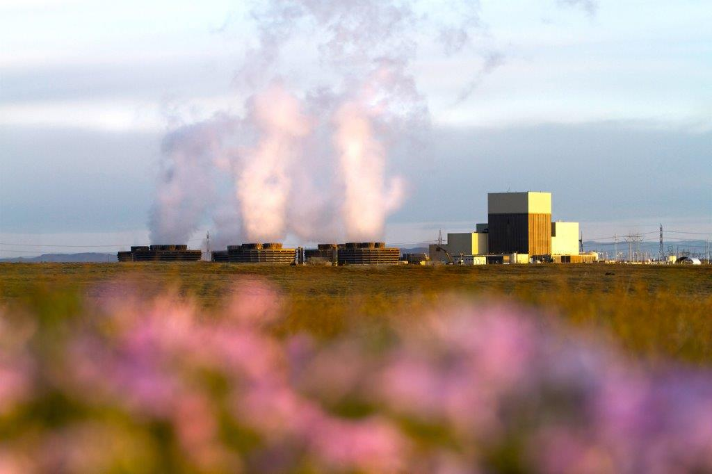 View of the nuclear power plant through a field of flowers.