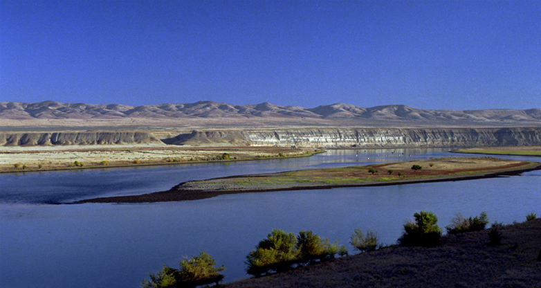 View of the Columbia River from the west bank, with brown grasses and shrubs in the foreground, blue water, a small island, and white bluffs and mountains across the river.