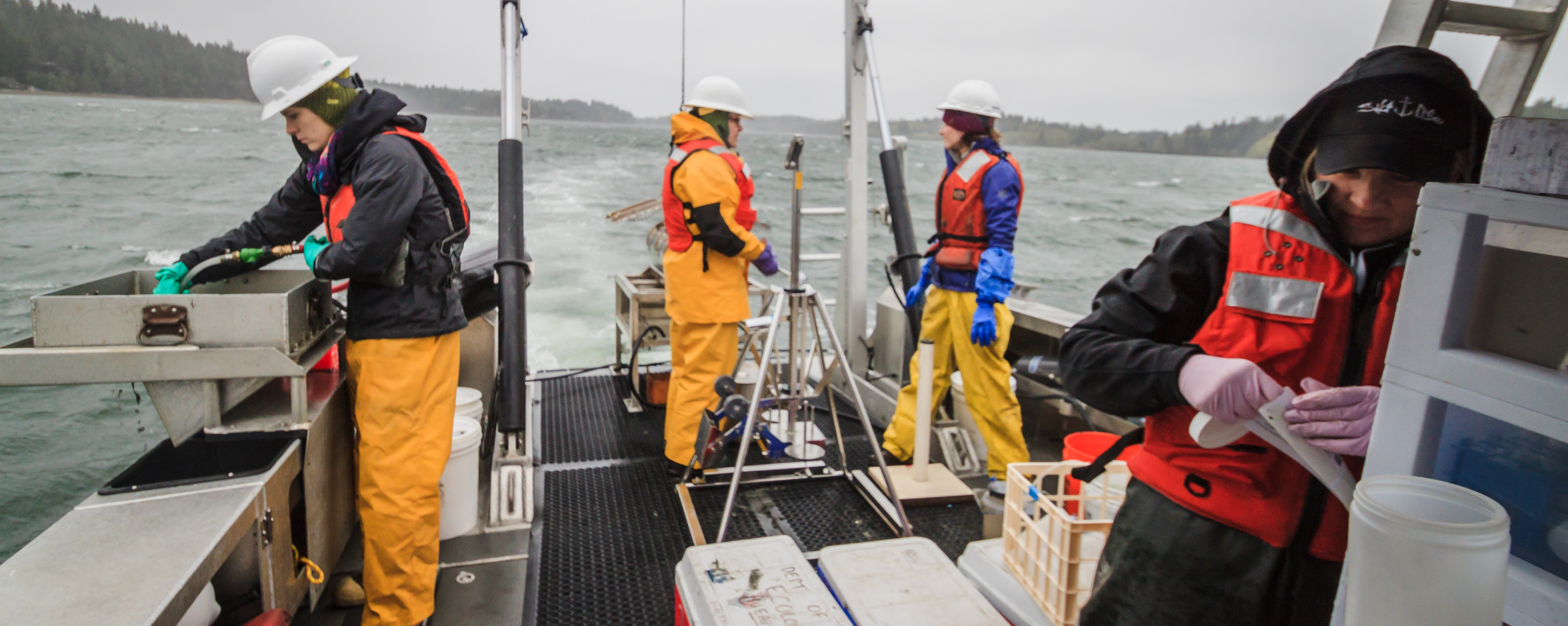 Four scientists in life jackets and rain suits work on the deck of a boat on a cloudy day on Puget Sound. One is washing sediment in a sieve with a hose and others are moving tubes full of sediment.