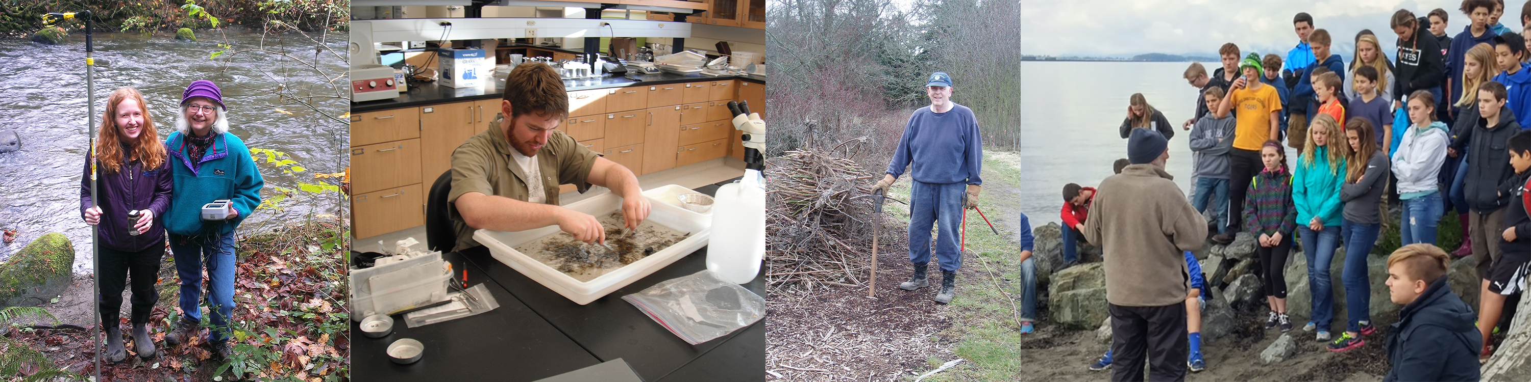 Photos, left to right, of volunteers: Collecting water samples; sorting eelgrass specimens; removing invasive blackberries; and teaching school children