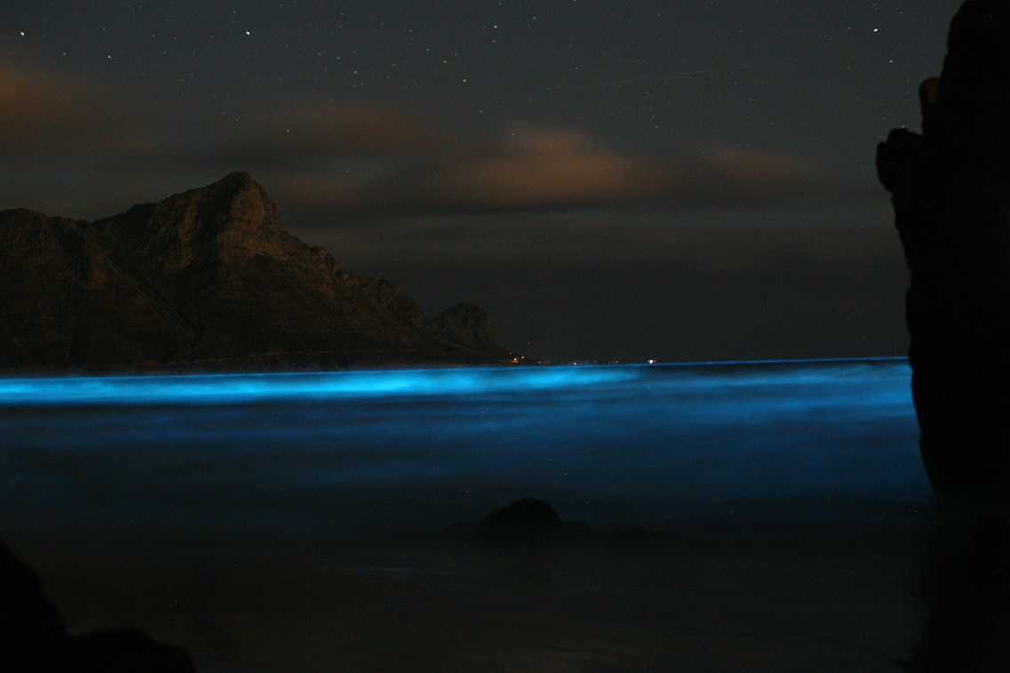 Waves on shore appear to glow from bioluminescence.