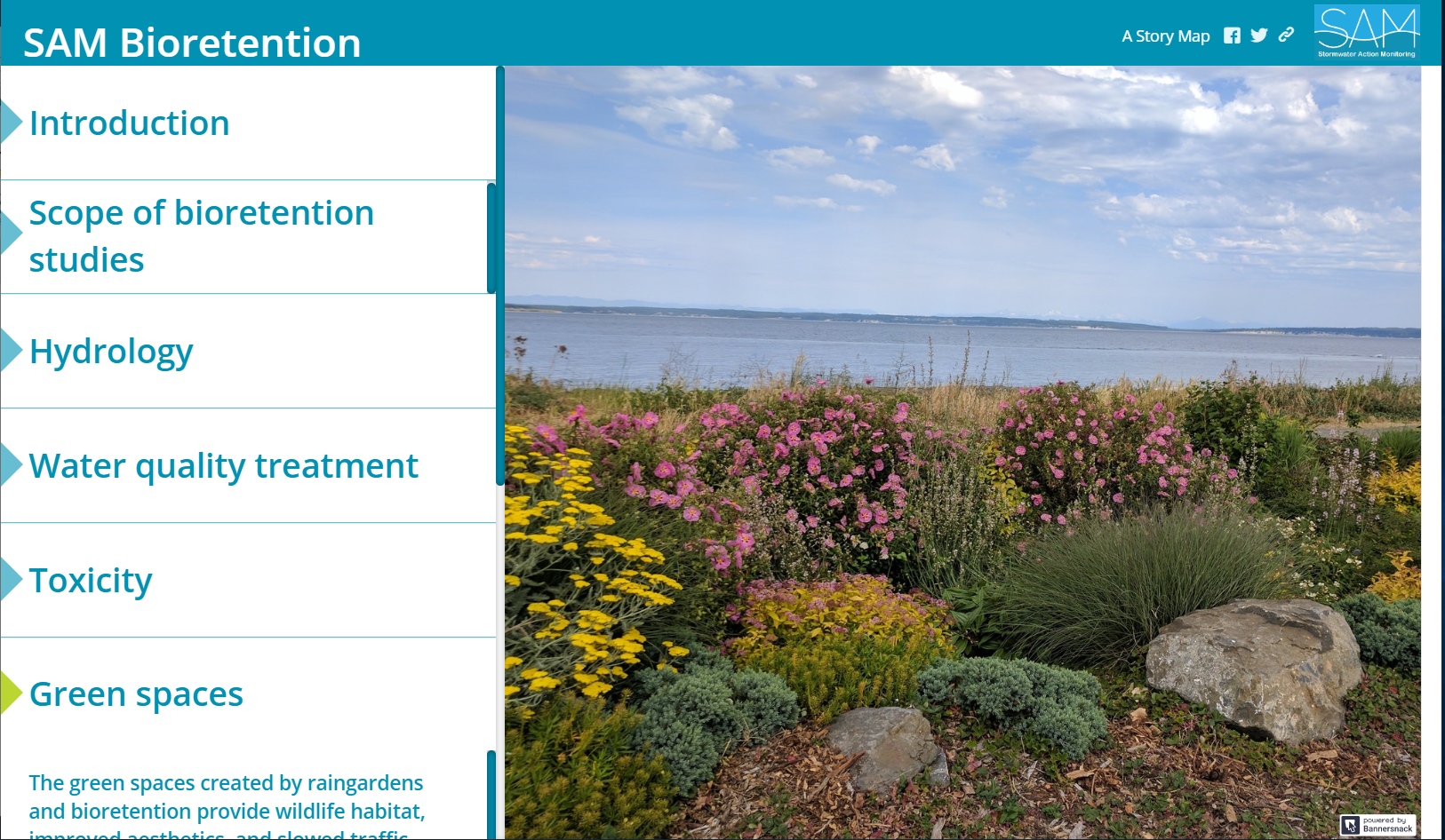 screenshot of the navigation within the storymap. Categories: Introduction, Scope of Bioretention studies,Hydrology,Water quality treatment,Toxicity, Green spaces