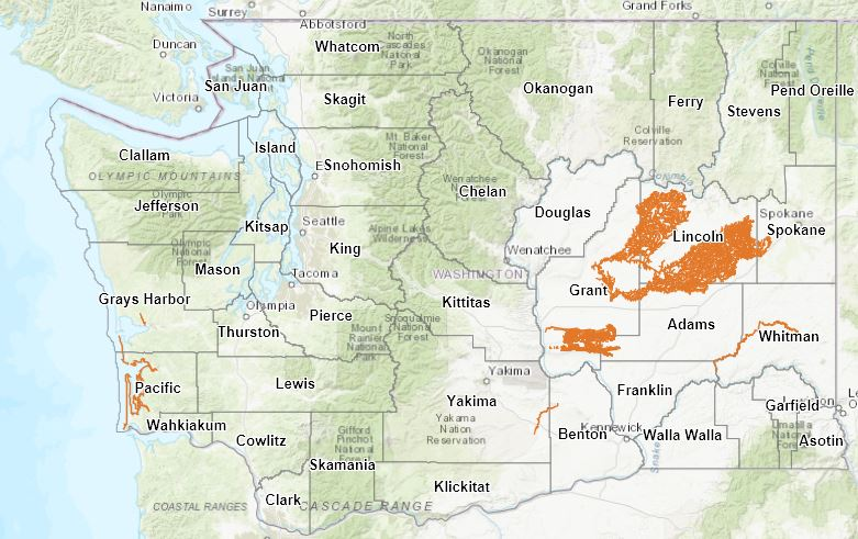 Map of possible mineral prospecting and placer mining locations in Washington.