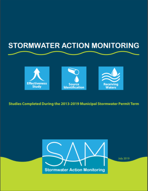 image of the document cover: Stormwater studies completed during the 2013-19 permit term.