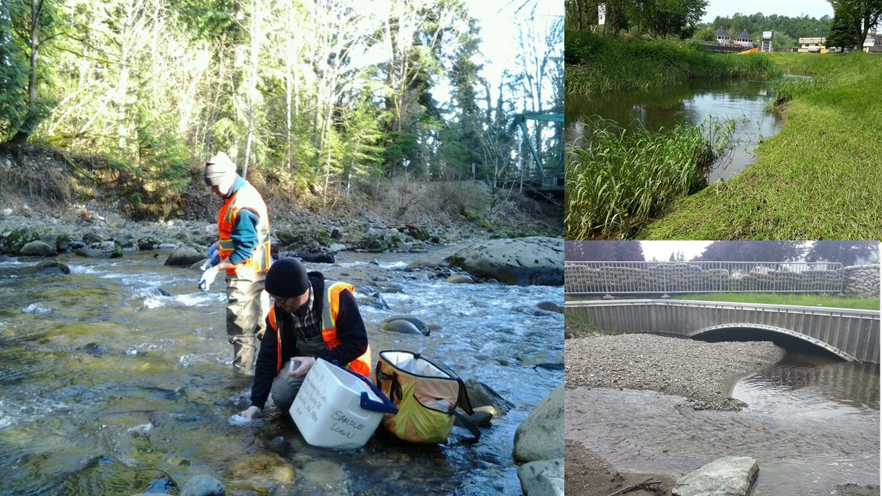 Compilation of three photos showing three urban stream sites sampled in this study. The main image shows two scientists taking a water sample. The other two images are scenic.