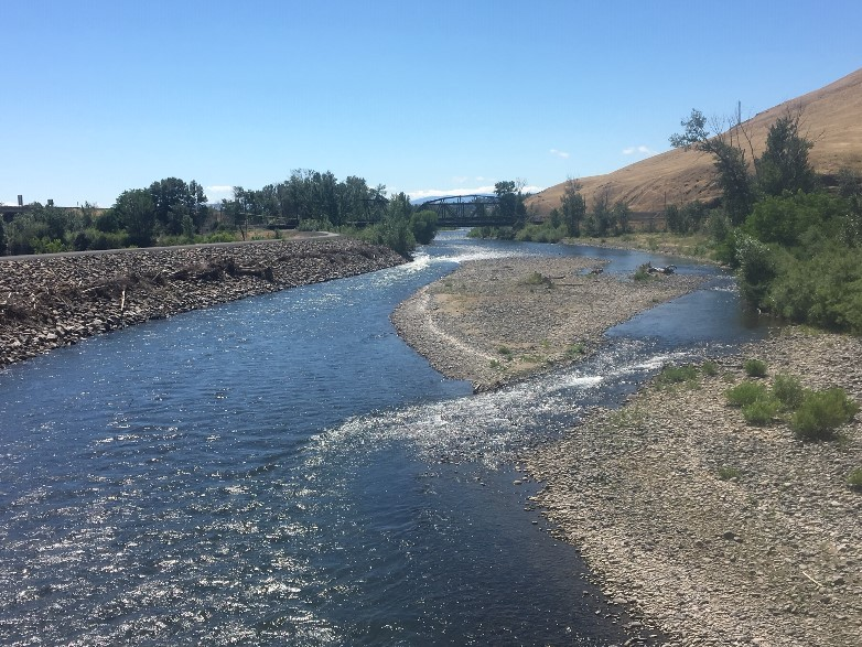 The Naches River as it flows towards its confluence with the Yakima River showing gravel bars and low flows.