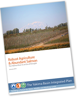 Graphic illustrates the cover of a Yakima Basin Integrated Plan report found in this tab: Robust Agriculture & Abundant Salmon