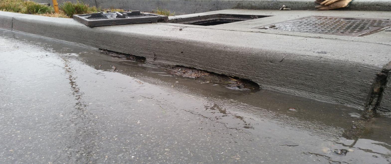 Wet street curb shows stormwater retrofit near Echo Lake.